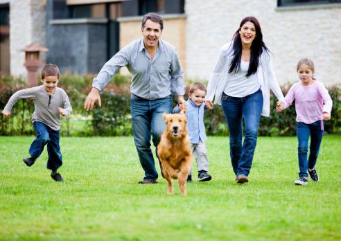 Le chien - Un exemple de fidélité pour l'Homme