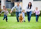 Le chien, un exemple de fidélité pour l'Homme