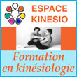 Ecole de kinésiologie de Lyon - Formation professionnelle en kinésiologie - Espace Kinésio