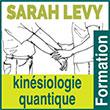Formation en kinésiologie quantique - Sarah Lévy - Travail cellulaire de conscience - Thérapie énergétique et cellulaire