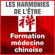 Les Harmonies de l'Être - Formation en Médecine Traditionnelle Chinoise Intégrative -  La Médecine Traditionnelle Chinoise (MTC) rééquilibre les rapports entre les fonctions organiques et cherche la cause à tout désordre. Le bien-être qu'elle procure génère un état favorable à une parfaite union entre le corps et l'esprit, entre l'être et l'univers.