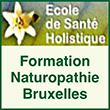 Formation naturopathie, consultations, conférences, ateliers pratiques, recherche en médecines naturelles. Sante-holistique.org