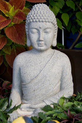 Je vérifie mes connaissances zen