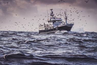 La pêche responsable ?