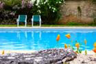 Les bassins de nage écologiques