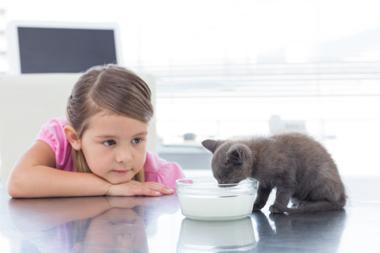 « Elle n'accepte de manger qu'en présence de son chat »