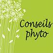 Conseils en phytothérapie
