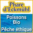 Phare d'Eckmuhl Poissons Bio Pêche éthique