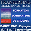 Transurfing Formation Coaching Quantique Neurosciences