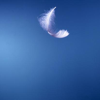 http://www.psychanalysemagazine.com/espace-psycho-bio-sante-parapsy-bien-etre/plume-blanche-ciel-bleu-conseils.jpg