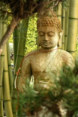 Pourquoi on mise sur le Zen ?