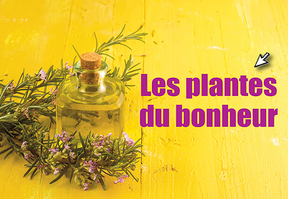 Les plantes du bonheur